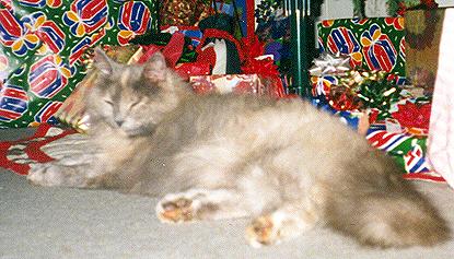 Muffie - Christmas 2000