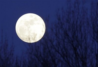 The full moon rises above the tree tops in Moreland Hills, Ohio on Wednesday, April 8, 2009. (AP Photo/Amy Sancetta)