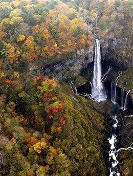 Fall foliage - Japan
