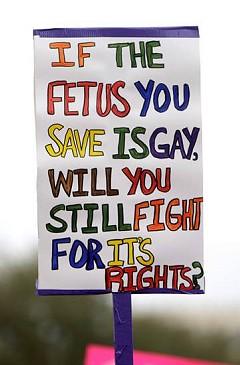 Gay fetus